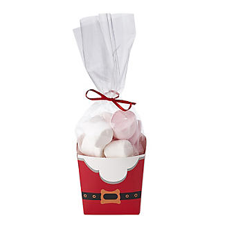 Christmas Treat Boxes with Presentation Bags – Pack of 4 alt image 5
