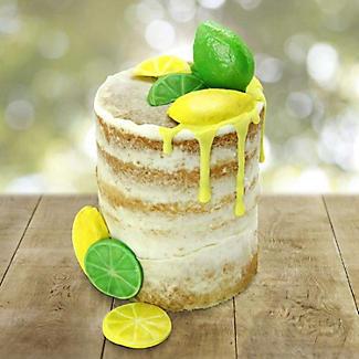 Katy Sue Designs Lemon Slices Silicone Icing Mould alt image 2