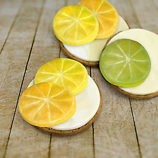 Katy Sue Designs Lemon Slices Silicone Icing Mould alt image 3