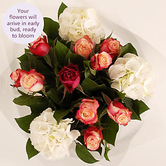 Hydrangea Bouquet with free express delivery alt image 3