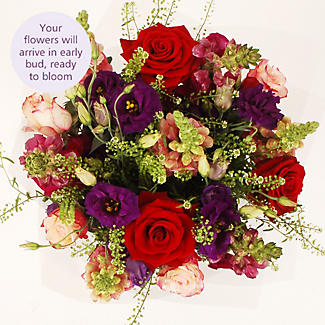 Summer Snapdragon Bouquet With Free Express Delivery alt image 3