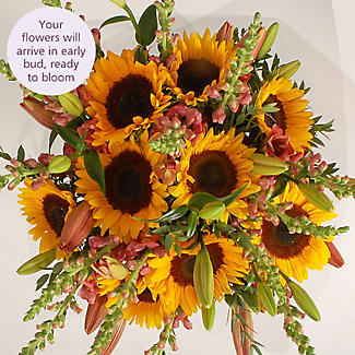 British Sunflower Bouquet with Free Express Delivery alt image 3