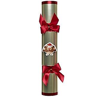 Racing Turkey Christmas Crackers - Pack of 6 alt image 3