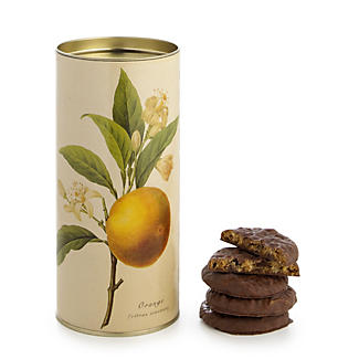 Grandma Wild's Botanical Biscuit Tubes Choc Chip & Orange