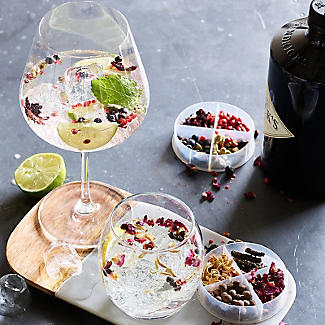 Gin and Tonic Cocktail Botanicals alt image 2