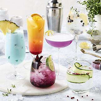 Gin and Tonic Cocktail Botanicals alt image 3