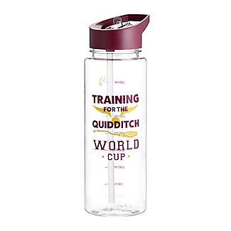 Harry Potter Quidditch Water Bottle 800ml