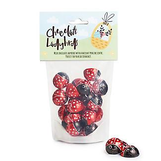 Milk Chocolate Praline Ladybirds 150g