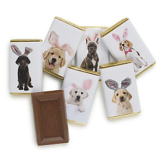 House of Dorchester Dogs in Bunny Ears Milk Chocolate Slims – Pack of 7