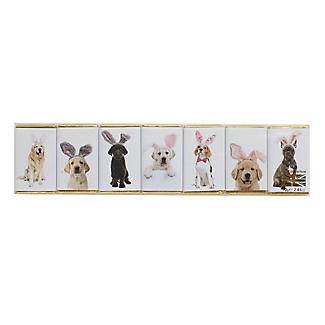 House of Dorchester Dogs in Bunny Ears Milk Chocolate Slims – Pack of 7 alt image 2