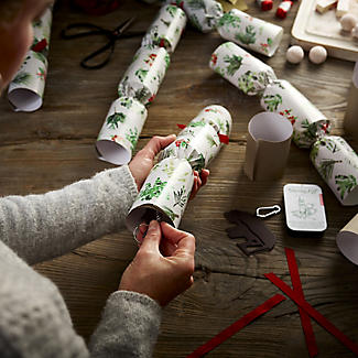 6 Lakeland Fill-Your-Own Evergreen Christmas Crackers alt image 4