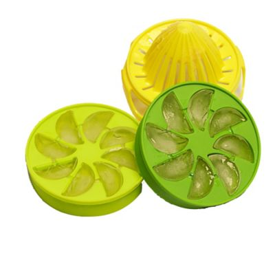 Citrus Ice Cube Infuser Set Lakeland
