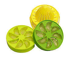 Citrus Ice Cube Infuser Set