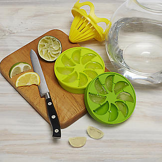 Citrus Ice Cube Infuser Set alt image 3