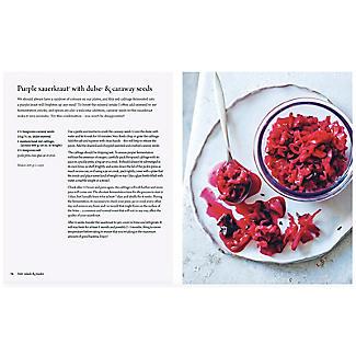 Fermented Foods Book alt image 5