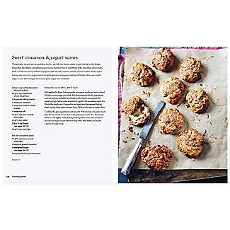 Fermented Foods Book alt image 7