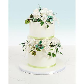 Renshaw Petal Icing Paste White 3 x 100g alt image 2
