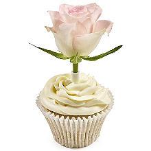 PME Flower Pick Bud Vases For Cakes Medium - Pack of 12