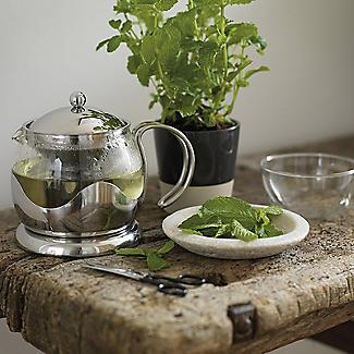 La Cafetiere Le Teapot Stainless Steel alt image 2